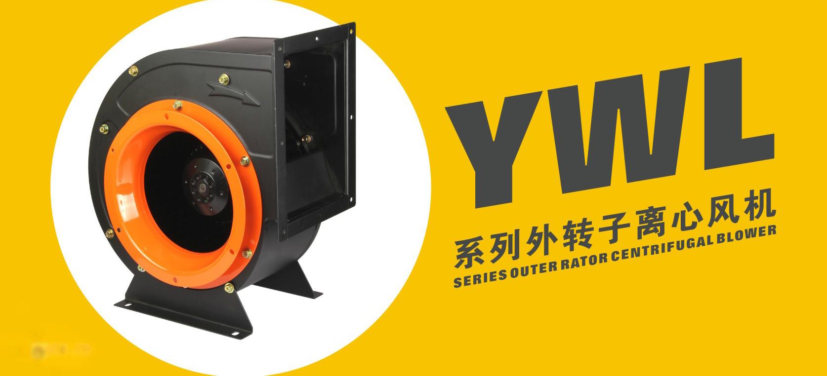 YWL00.jpg